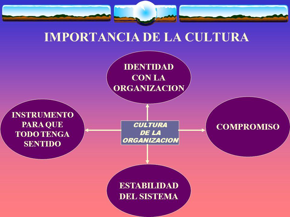 IMPORTANCIA DE LA CULTURA