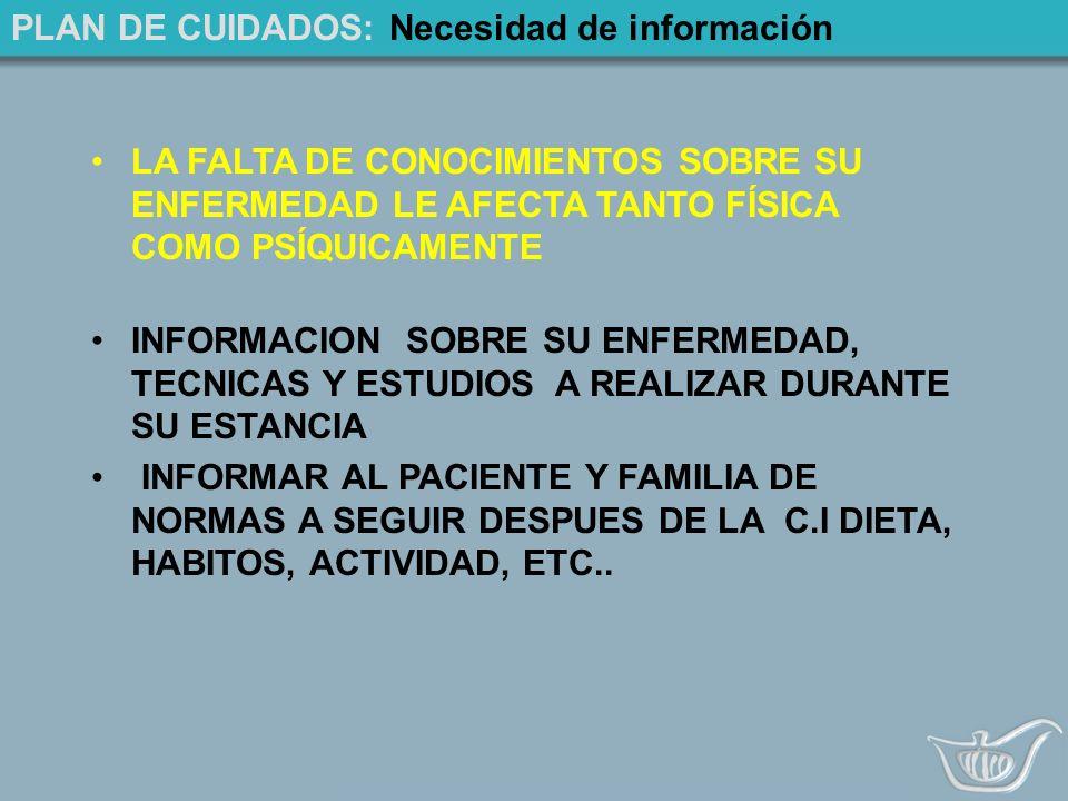 PLAN DE CUIDADOS: Necesidad de información