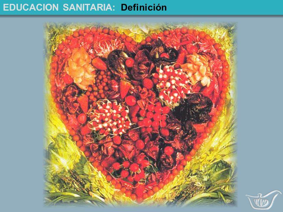 EDUCACION SANITARIA: Definición