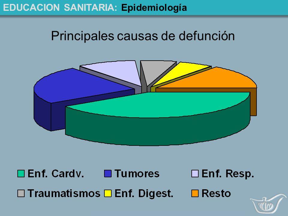 Principales causas de defunción