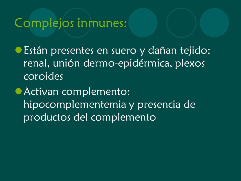 Complejos inmunes: Están presentes en suero y dañan tejido: renal, unión dermo-epidérmica, plexos coroides.
