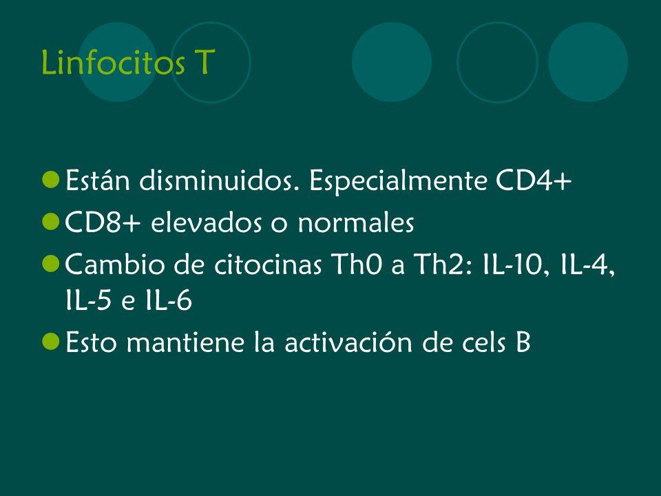 Linfocitos T Están disminuidos. Especialmente CD4+