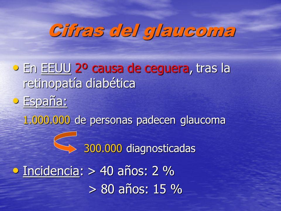 Cifras del glaucomaEn EEUU 2º causa de ceguera, tras la retinopatía diabética. España: 1.000.000 de personas padecen glaucoma.
