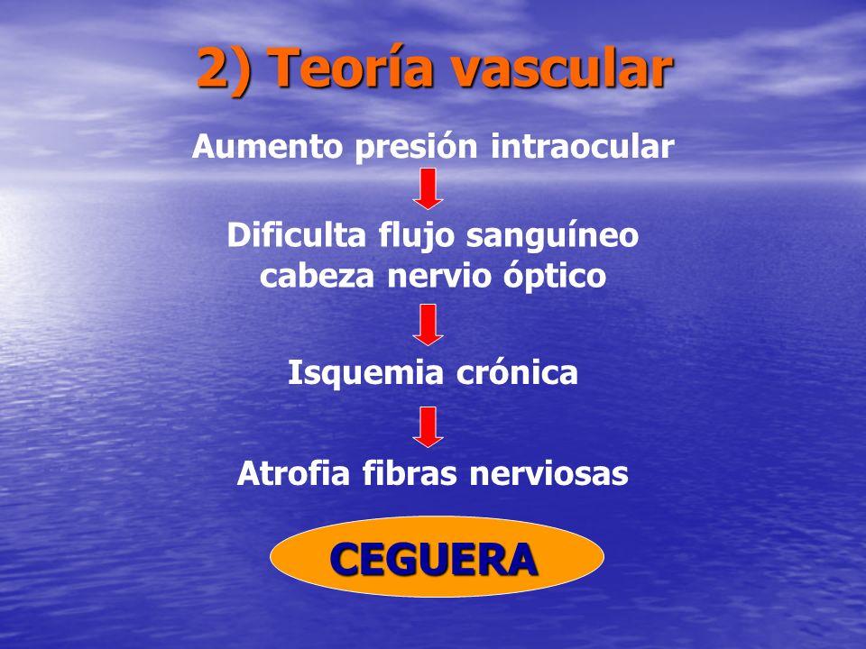 2) Teoría vascular CEGUERA Aumento presión intraocular