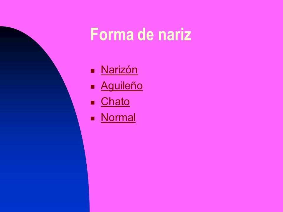 Forma de nariz Narizón Aguileño Chato Normal