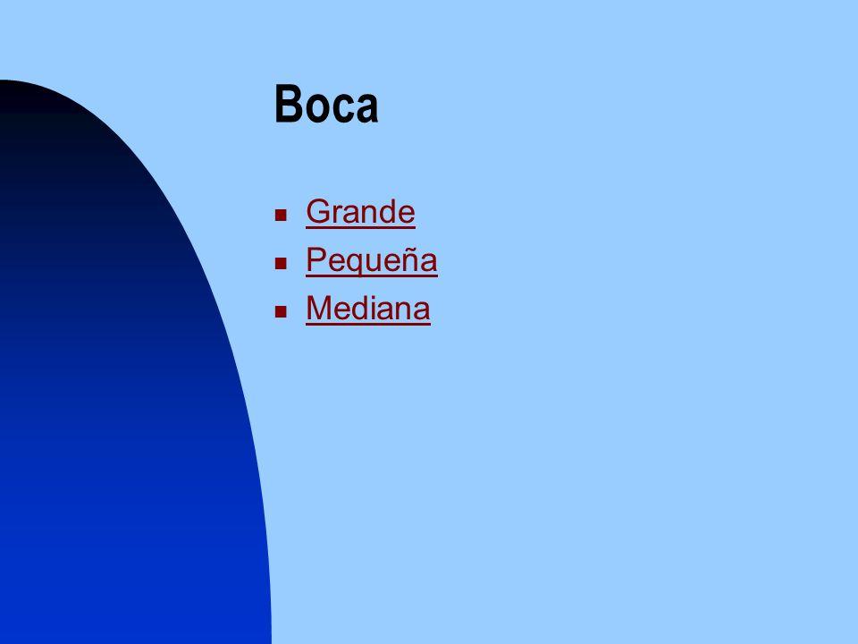 Boca Grande Pequeña Mediana