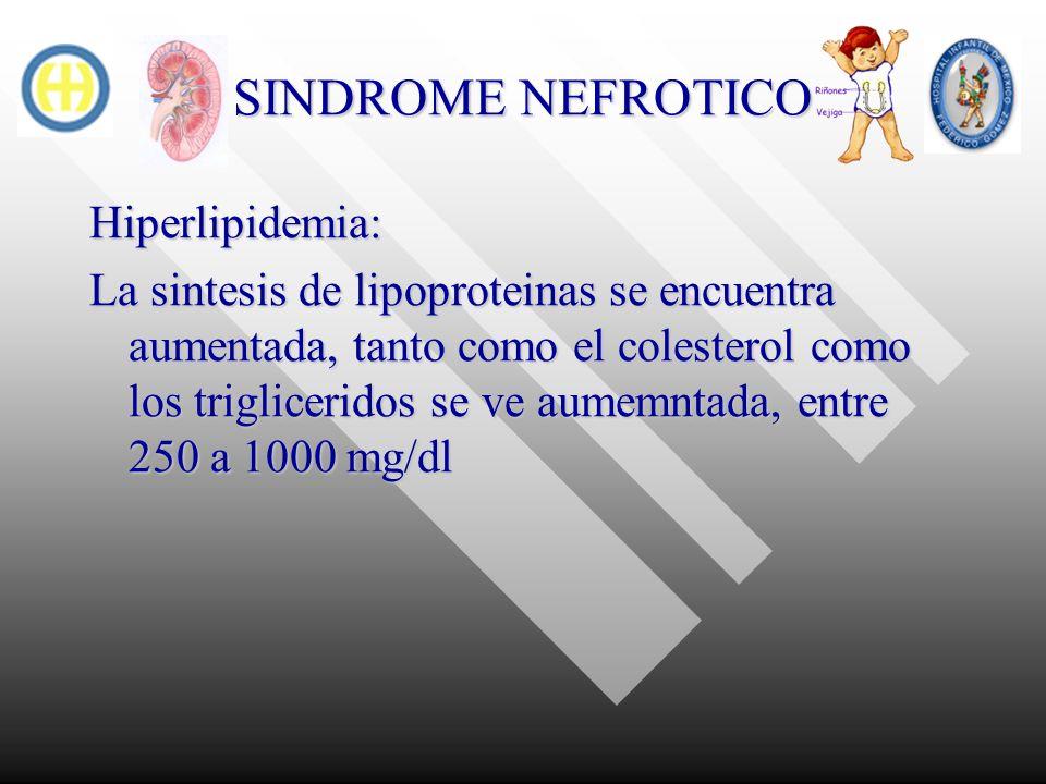 SINDROME NEFROTICO Hiperlipidemia: