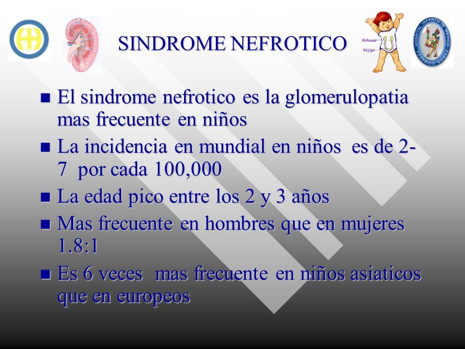 SINDROME NEFROTICO El sindrome nefrotico es la glomerulopatia mas frecuente en niños. La incidencia en mundial en niños es de 2-7 por cada 100,000.