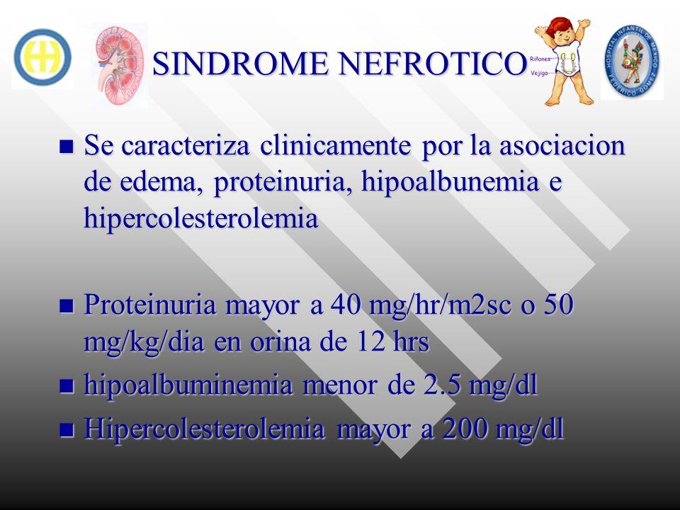 SINDROME NEFROTICO Se caracteriza clinicamente por la asociacion de edema, proteinuria, hipoalbunemia e hipercolesterolemia.