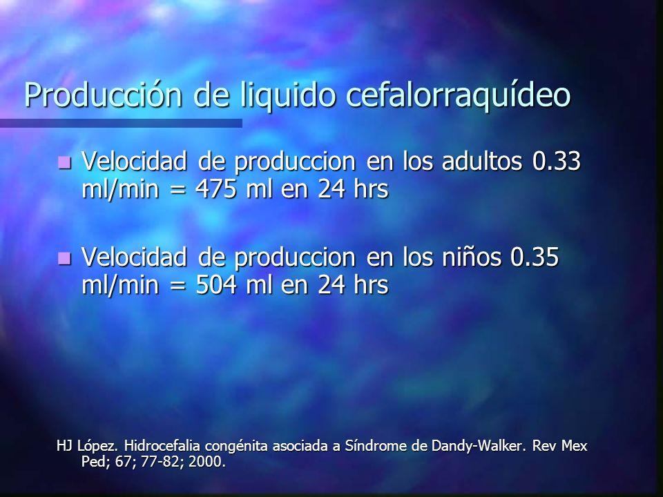 Producción de liquido cefalorraquídeo