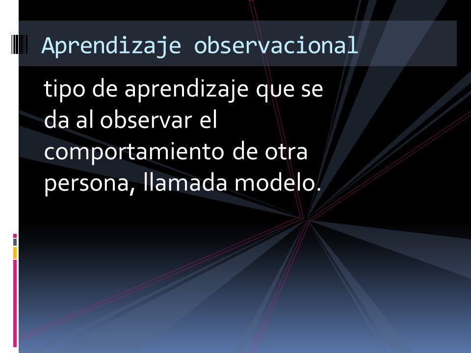 Aprendizaje observacional