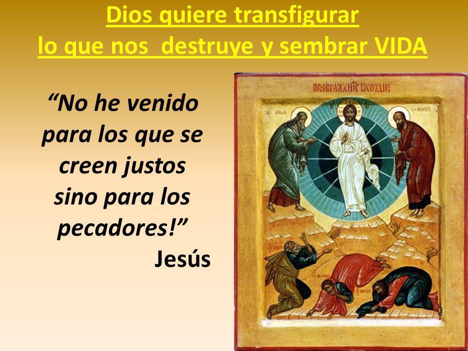 Dios quiere transfigurar lo que nos destruye y sembrar VIDA