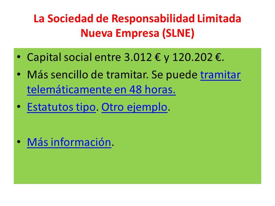 La Sociedad de Responsabilidad Limitada Nueva Empresa (SLNE)
