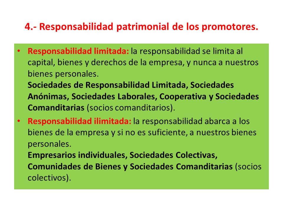 4.- Responsabilidad patrimonial de los promotores.