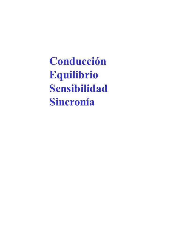 Conducción Equilibrio Sensibilidad Sincronía
