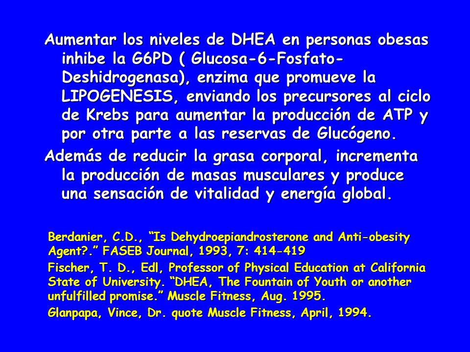 Aumentar los niveles de DHEA en personas obesas inhibe la G6PD ( Glucosa-6-Fosfato-Deshidrogenasa), enzima que promueve la LIPOGENESIS, enviando los precursores al ciclo de Krebs para aumentar la producción de ATP y por otra parte a las reservas de Glucógeno.