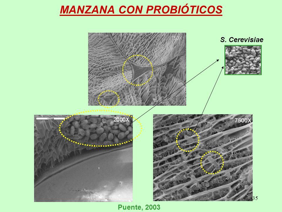 MANZANA CON PROBIÓTICOS
