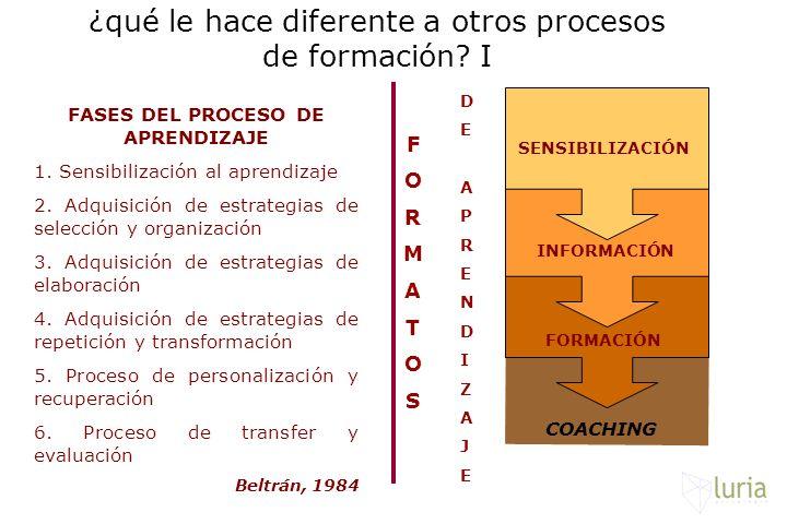 ¿qué le hace diferente a otros procesos de formación I