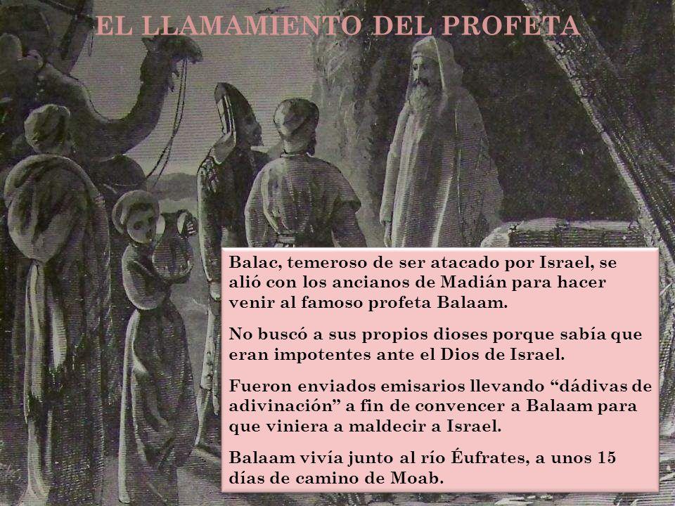 EL LLAMAMIENTO DEL PROFETA