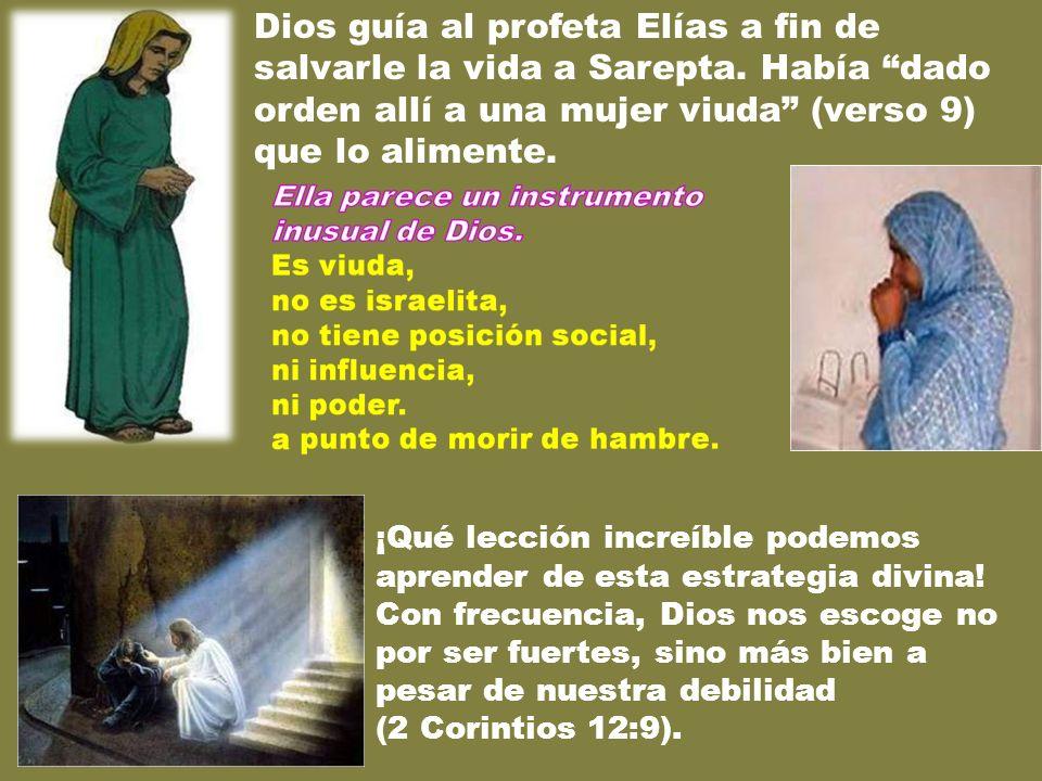 Dios guía al profeta Elías a fin de salvarle la vida a Sarepta