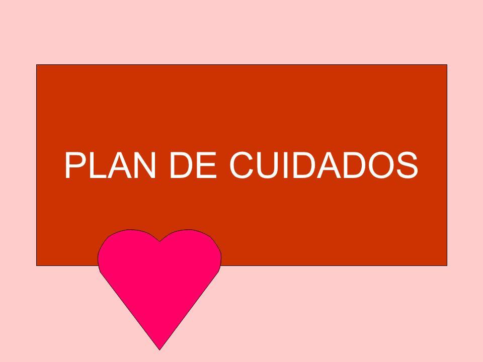 PLAN DE CUIDADOS