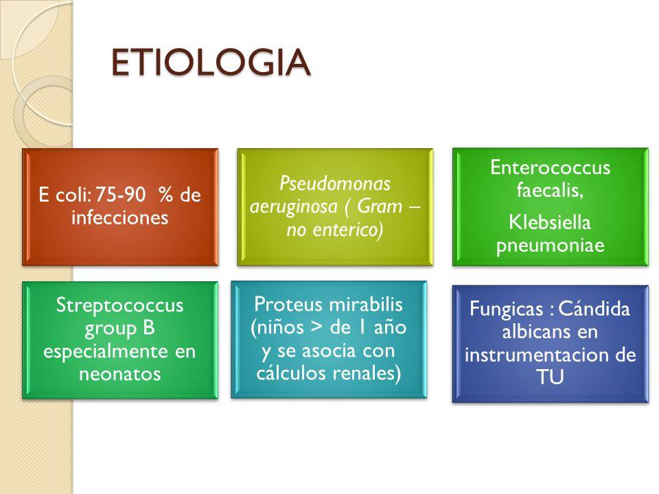 ETIOLOGIA Enterococcus faecalis,