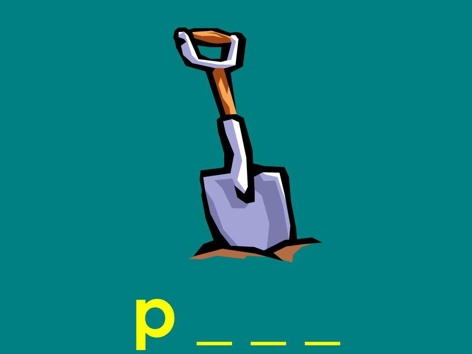 p _ _ _
