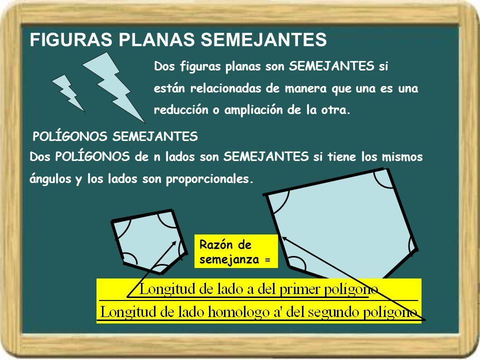 FIGURAS PLANAS SEMEJANTES