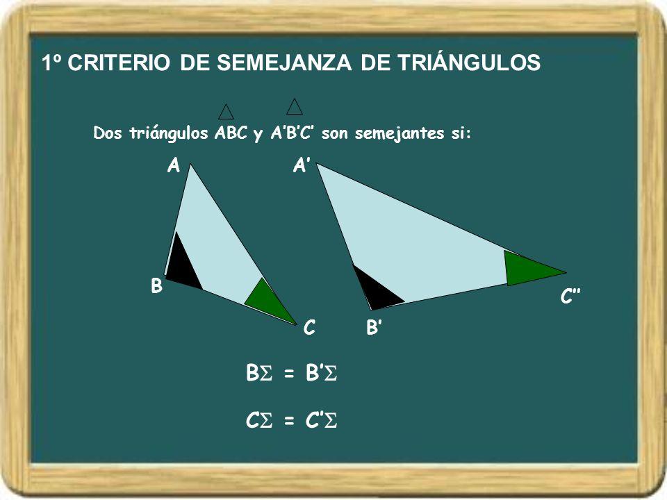 1º CRITERIO DE SEMEJANZA DE TRIÁNGULOS