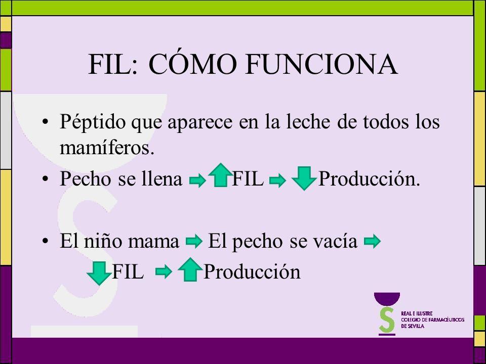 FIL: CÓMO FUNCIONA Péptido que aparece en la leche de todos los mamíferos. Pecho se llena FIL Producción.