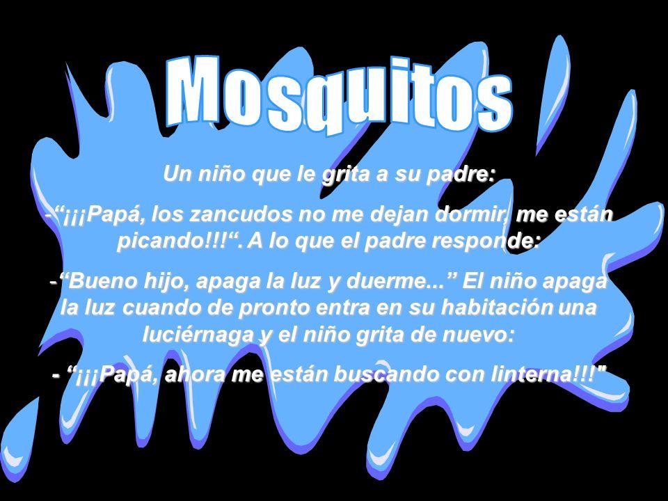 Mosquitos Un niño que le grita a su padre: