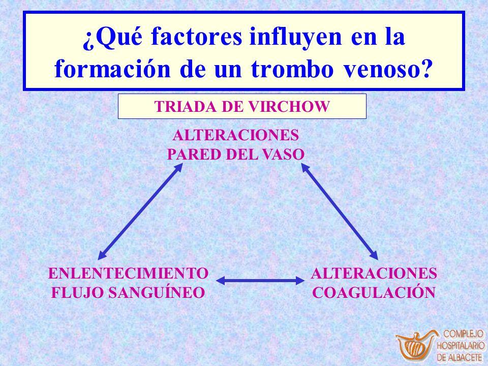 ¿Qué factores influyen en la formación de un trombo venoso