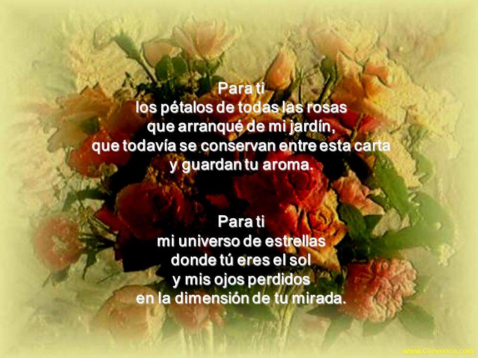 Para ti los pétalos de todas las rosas que arranqué de mi jardín, que todavía se conservan entre esta carta y guardan tu aroma.