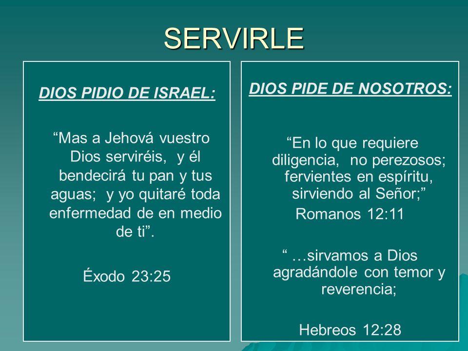 …sirvamos a Dios agradándole con temor y reverencia;
