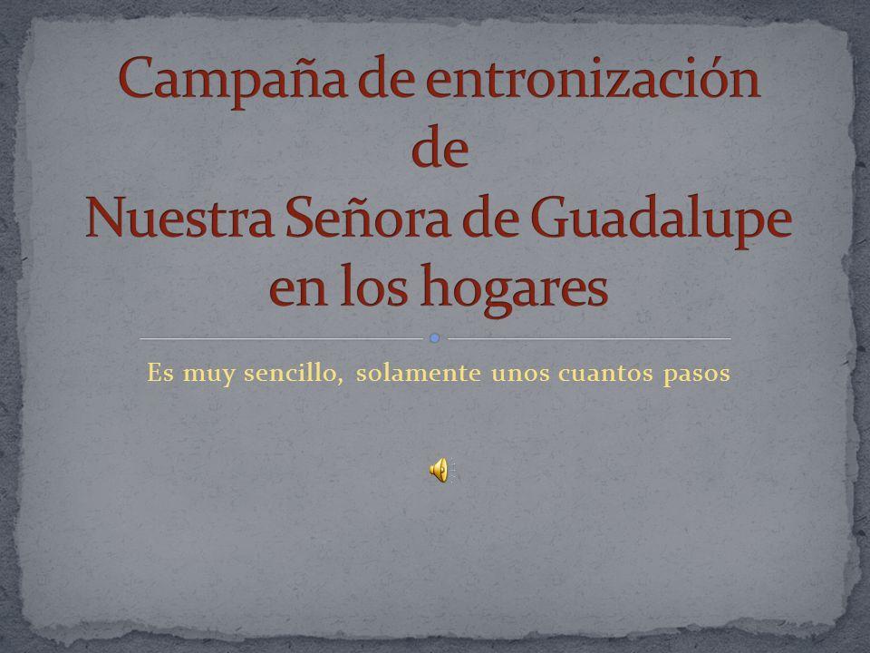 Campaña de entronización de Nuestra Señora de Guadalupe en los hogares