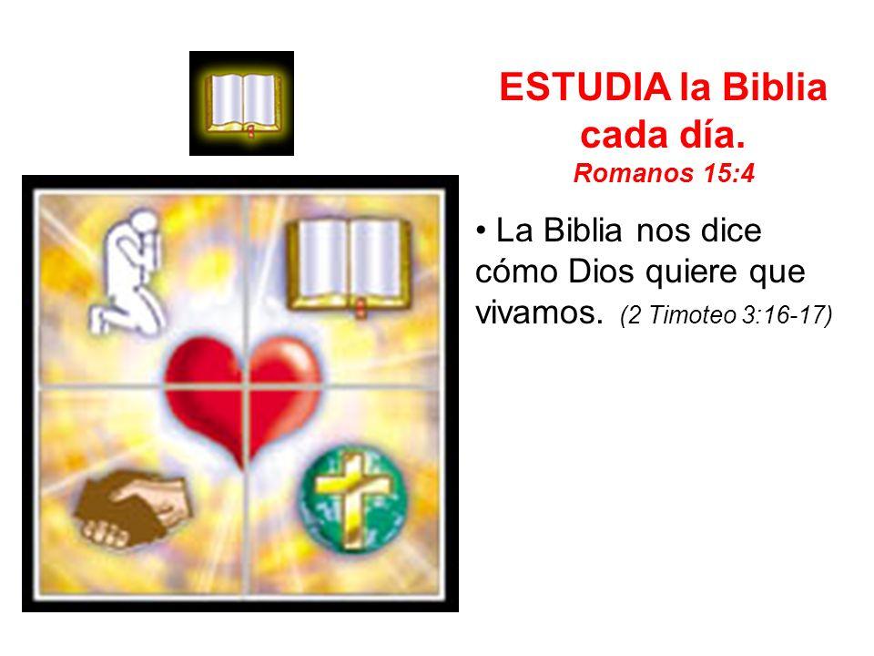 ESTUDIA la Biblia cada día.