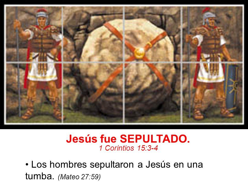 Jesús fue SEPULTADO. 1 Corintios 15:3-4. • Los hombres sepultaron a Jesús en una tumba.