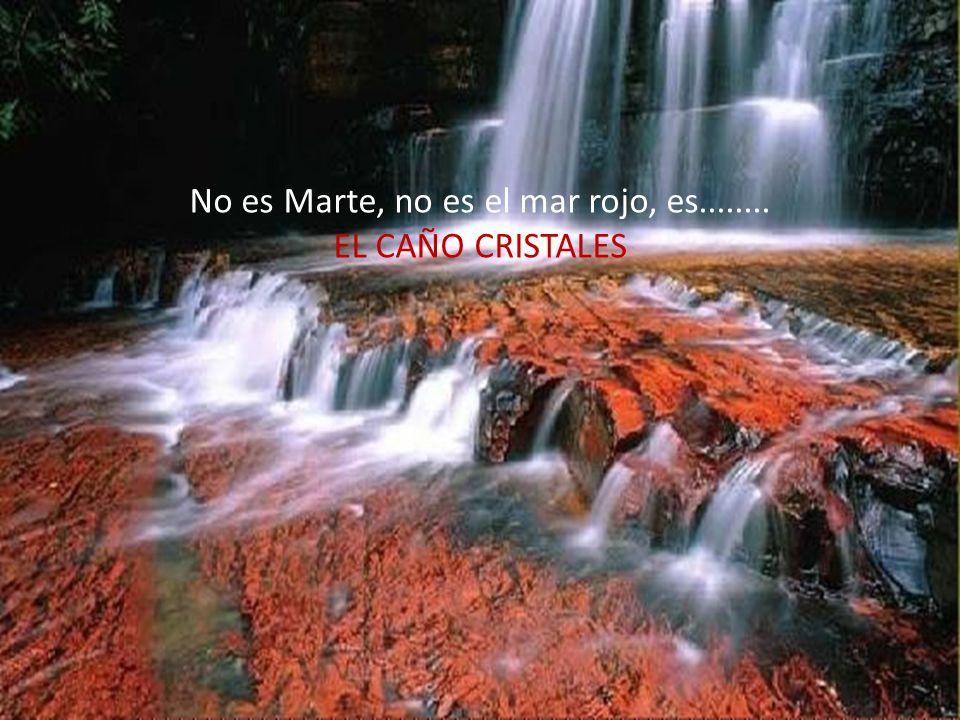 No es Marte, no es el mar rojo, es........