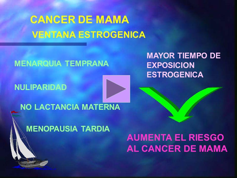 CANCER DE MAMA VENTANA ESTROGENICA AUMENTA EL RIESGO AL CANCER DE MAMA