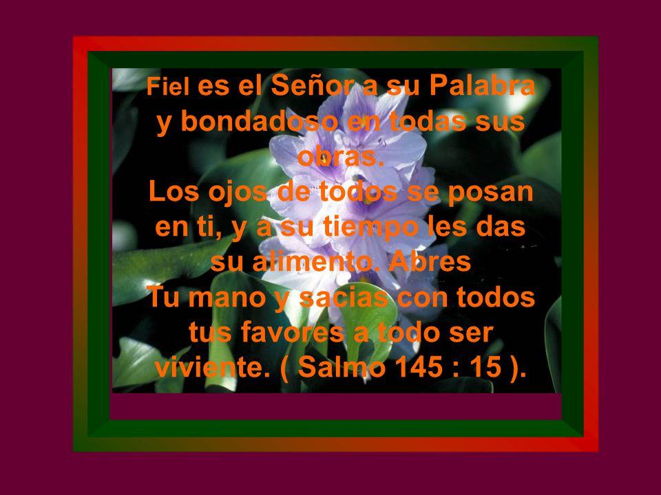 Fiel es el Señor a su Palabra y bondadoso en todas sus obras.