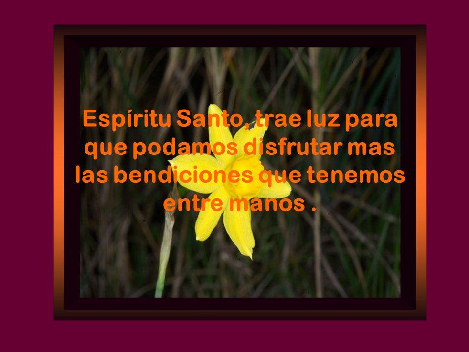 Espíritu Santo, trae luz para que podamos disfrutar mas las bendiciones que tenemos entre manos .