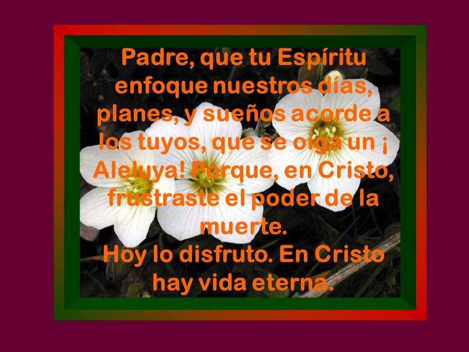Hoy lo disfruto. En Cristo hay vida eterna.