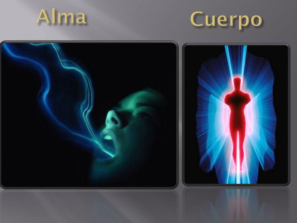 Alma Cuerpo