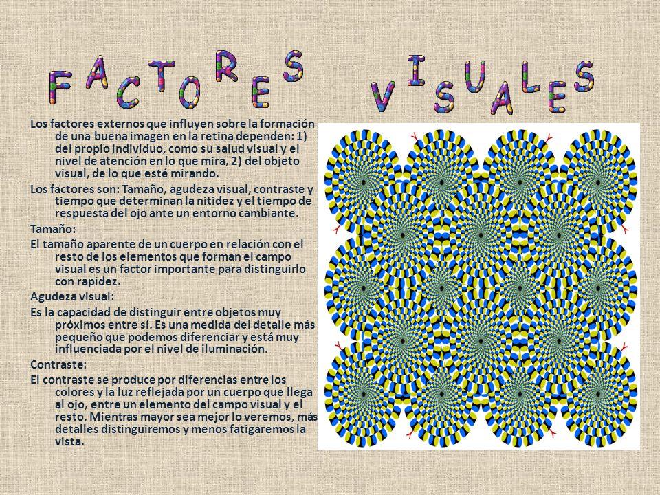Los factores externos que influyen sobre la formación de una buena imagen en la retina dependen: 1) del propio individuo, como su salud visual y el nivel de atención en lo que mira, 2) del objeto visual, de lo que esté mirando.