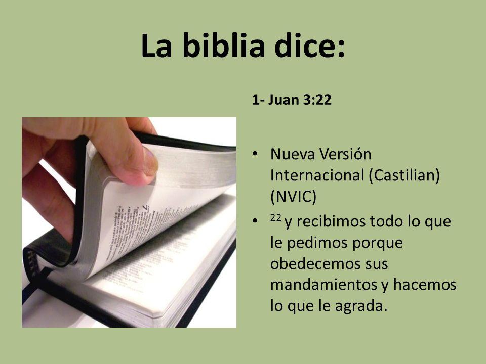 La biblia dice: Nueva Versión Internacional (Castilian) (NVIC)