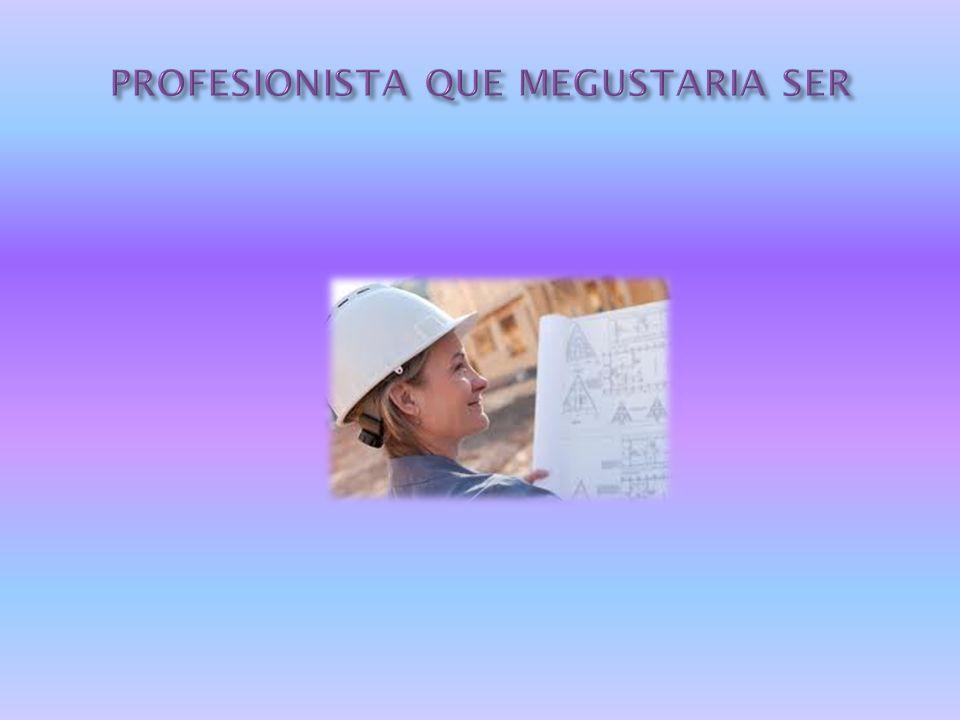 PROFESIONISTA QUE MEGUSTARIA SER