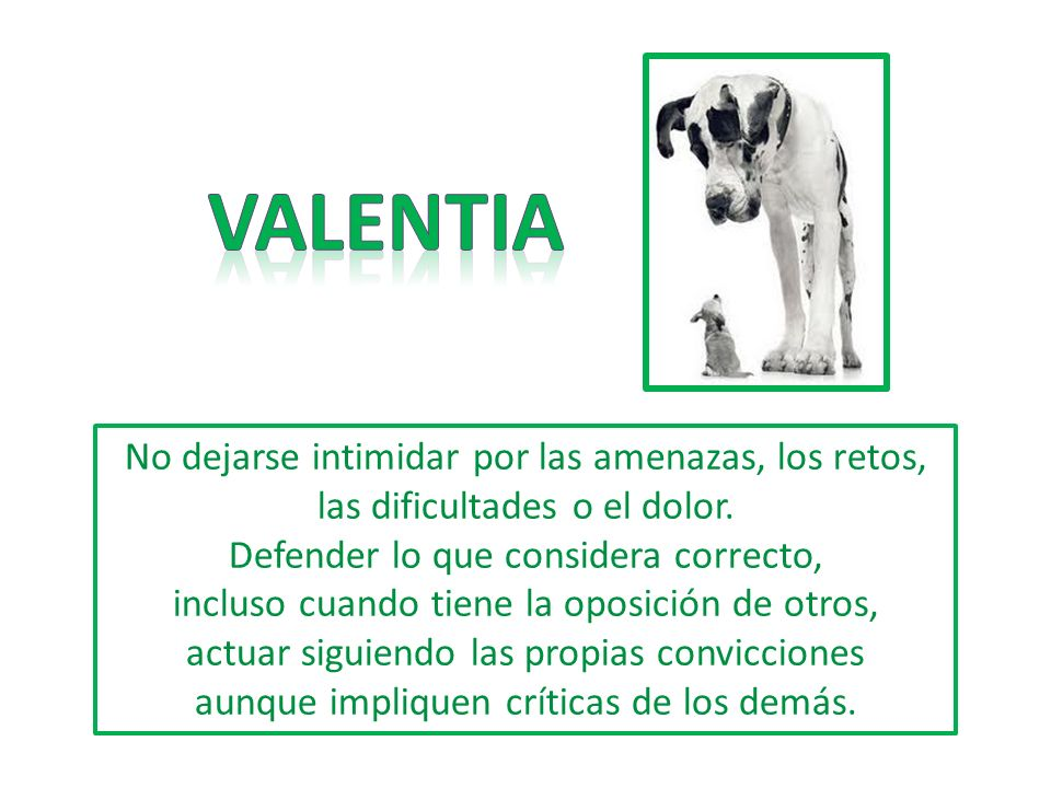 VALENTIA No dejarse intimidar por las amenazas, los retos, las dificultades o el dolor.