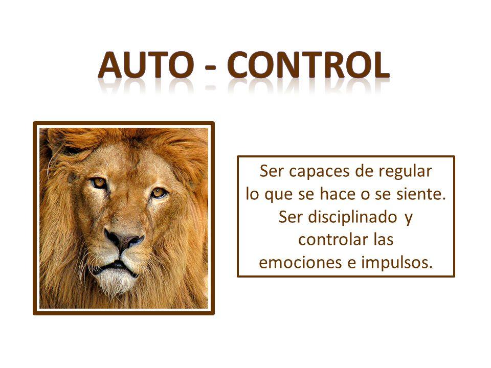 Auto - control