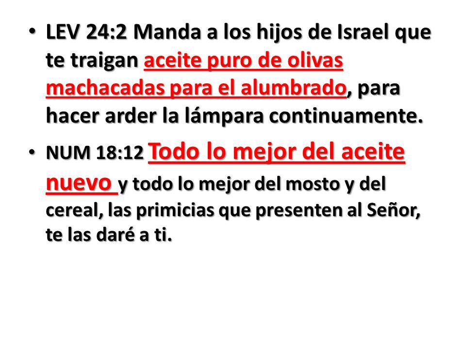 LEV 24:2 Manda a los hijos de Israel que te traigan aceite puro de olivas machacadas para el alumbrado, para hacer arder la lámpara continuamente.