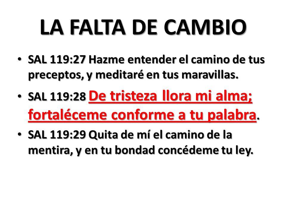 LA FALTA DE CAMBIO SAL 119:27 Hazme entender el camino de tus preceptos, y meditaré en tus maravillas.